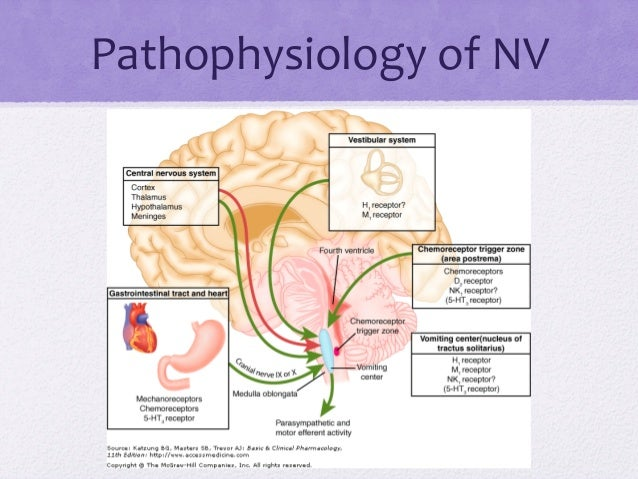 Pathophysiology of nausea and vomiting pdf